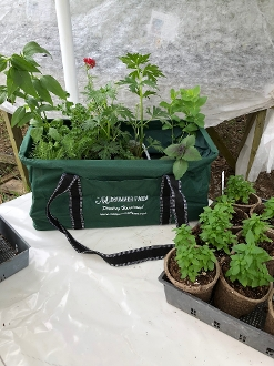 Midsummer Farm Plant Tote Bag